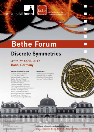 Poster Discrete Symmetries