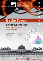 String Cosmology Poster